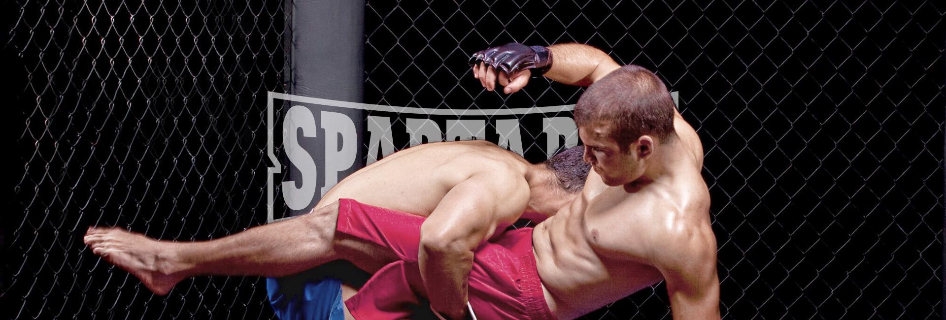 SpartaBox: MMA